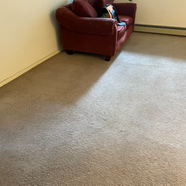 couch room carpet ccouch room carpet cleaning - after