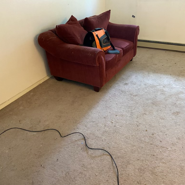 couch room carpet cleaning - before