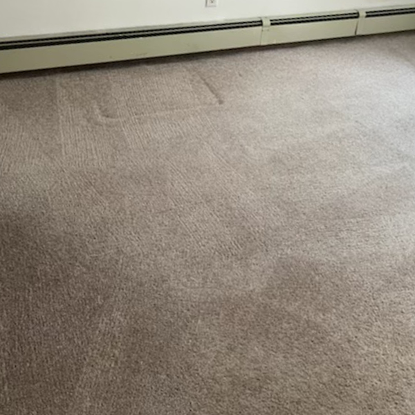light room carpet cleaning - after