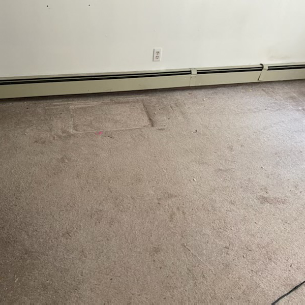 light room carpet cleaning - before